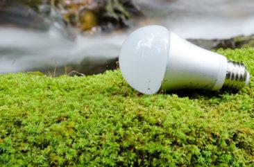 Ampoule LED – une solution pour faire une économie