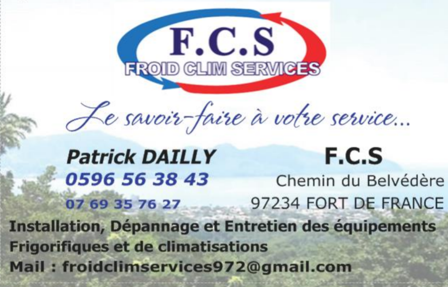 FROID CLIM SERVICES