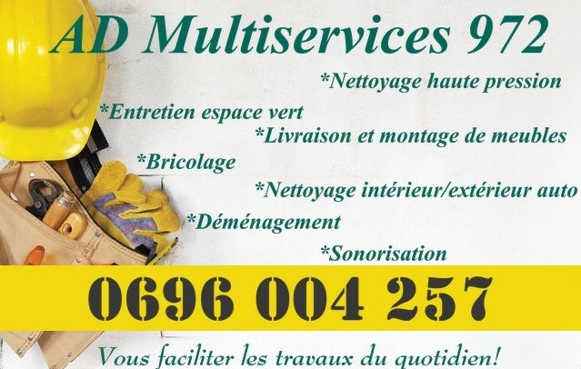 AD MULTISERVICES 972